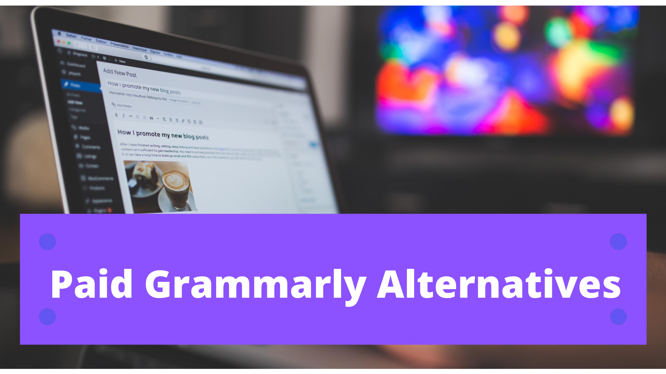12 Paid Grammarly Alternatives for Content Writers